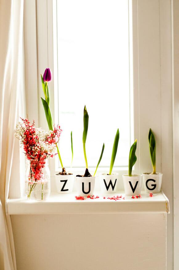 Frühlingsblumen Dekoration