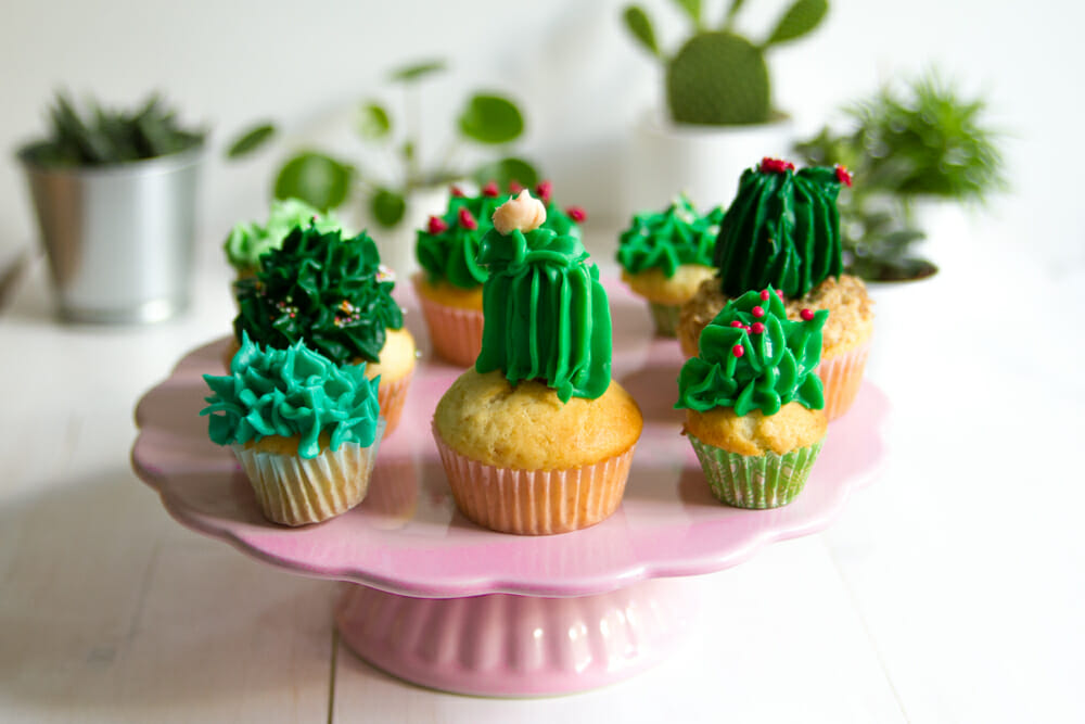 Kaktus-Muffins-Urban-Jungle-Baking--3