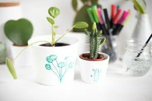 Porzellan Aquarellieren mit Kaktus und Pilea