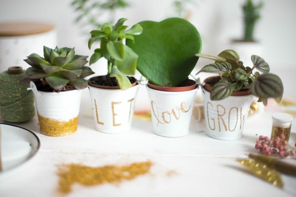 pflanzentöpfe-mit-gold-lettering-und-glitzer-13