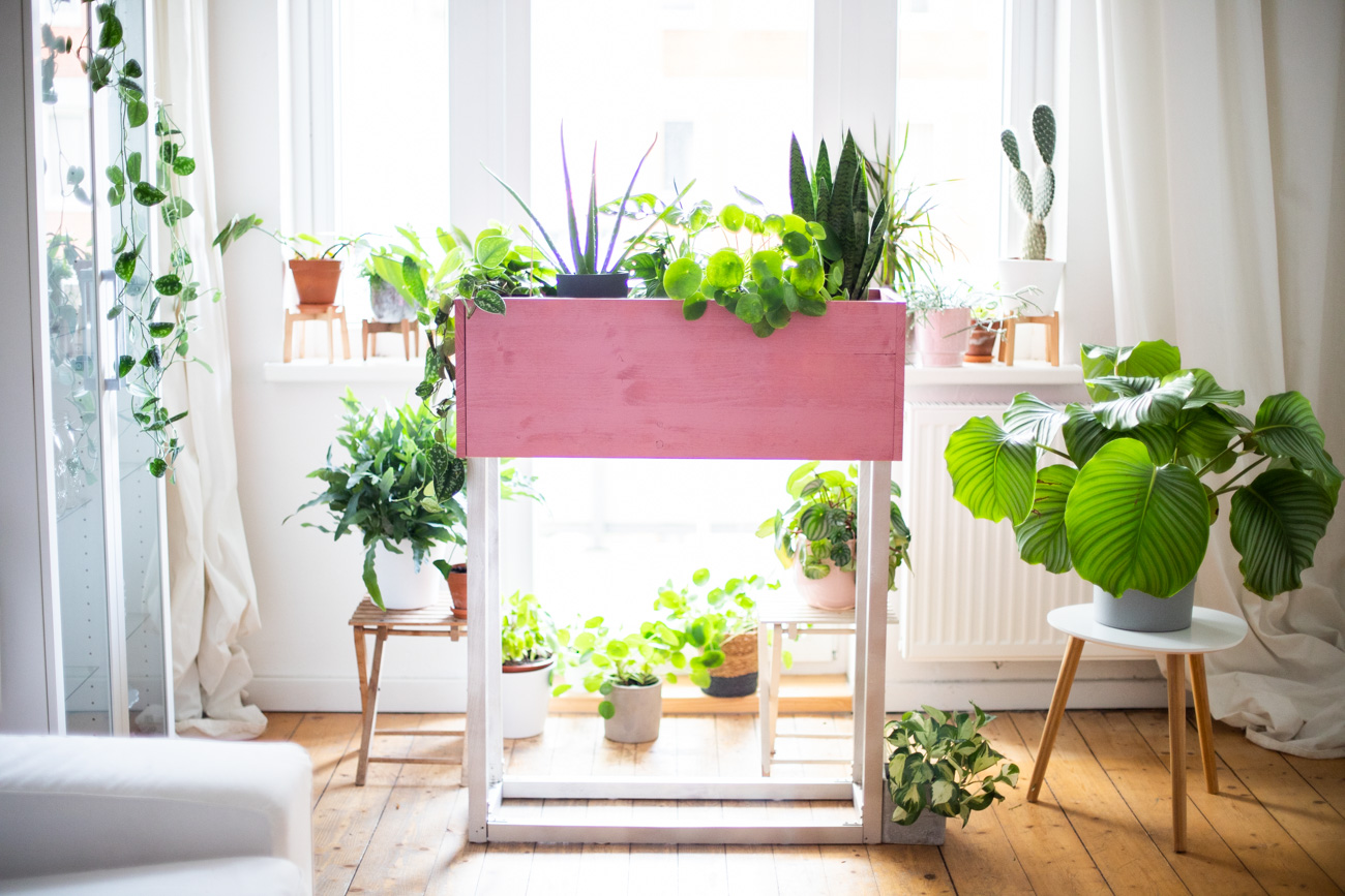 diy_plantbox_interior_pflanzen-box-54